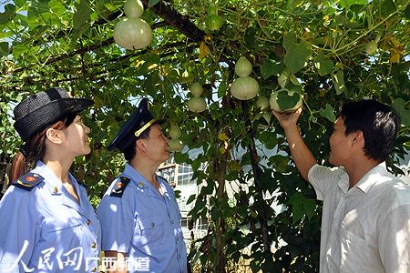 广西藤县:乡村旅游特色浓 农民增收速度快